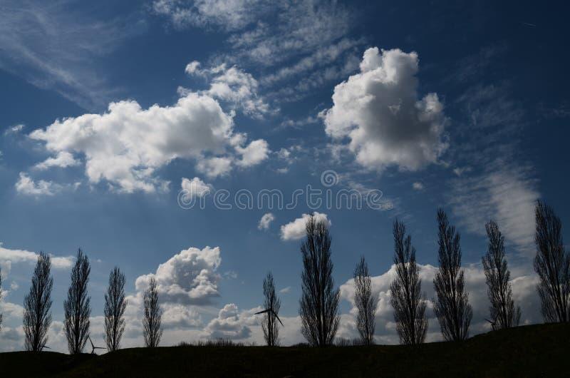 Download Nubes foto de archivo. Imagen de azul, trigo, árbol, hierba - 64201236