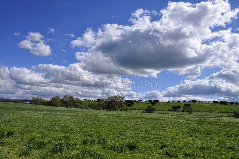 Nubes imagem de stock royalty free