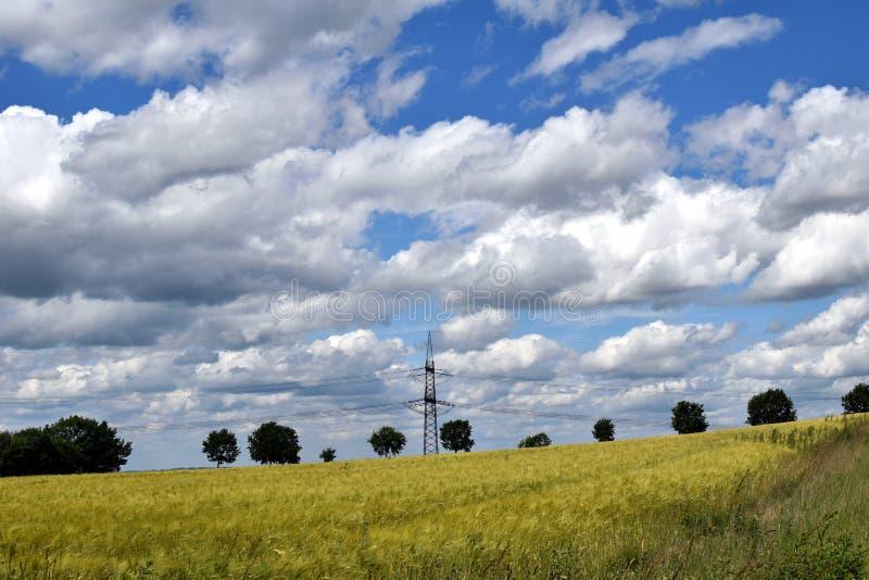 Nubes blancas, cielo azul, campos verdes Verano fotos de archivo