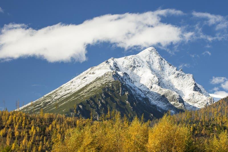 Nubes blancas en montañas nevadas antedichas del cielo azul con el bosque del otoño imagen de archivo
