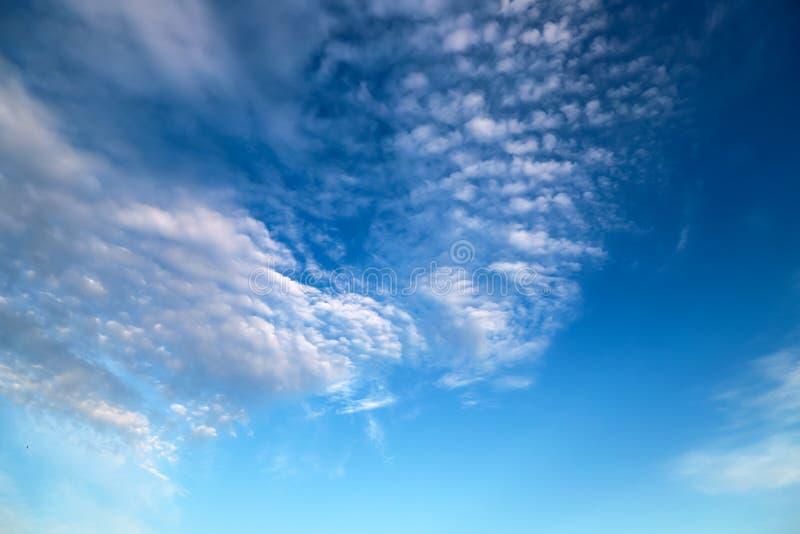 Nubes blancas hermosas en la forma de las flores, cumulonimbus, c?mulo, nubes de lluvia contra un cielo azul pintoresco imagen de archivo