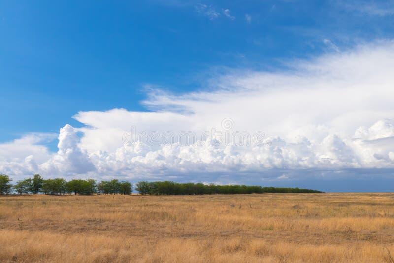 Nubes blancas sobre campos agrícolas imagen de archivo libre de regalías