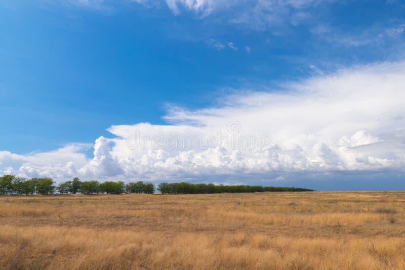 Nubes blancas sobre campos agrícolas imagen de archivo
