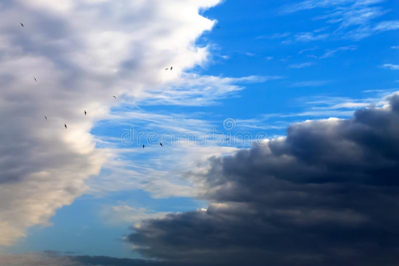 Nubes blancas y oscuras hermosas, lluvia, nubes de cúmulo contra un cielo azul Nubes pintorescas, fantásticas Paisaje llano imagen de archivo