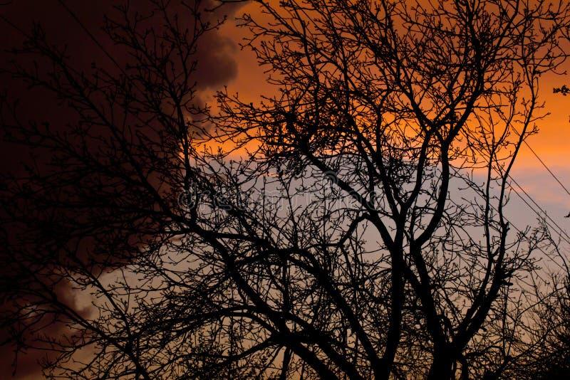 Nubes coloridas en una disminución después de una lluvia fotografía de archivo libre de regalías