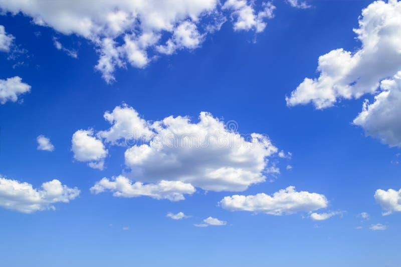 Nubes de cúmulo mullidas blancas altas en el cielo azul del verano Tipos de la nube y fenómenos atmosféricos en un d?a asoleado fotos de archivo libres de regalías