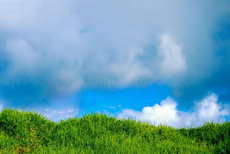 Nubes de lluvia sobre la loma herbosa fotografía de archivo