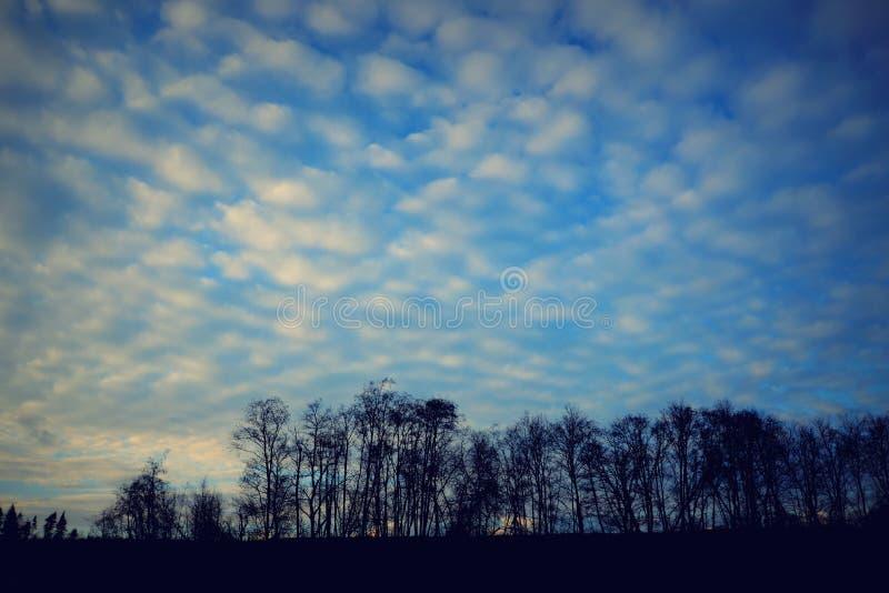 Nubes del algodón fotografía de archivo