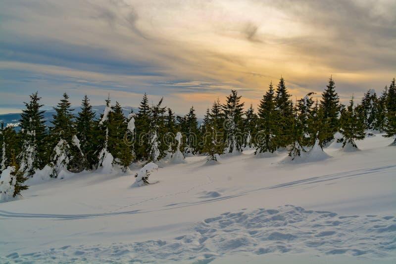 Nubes e invierno de los colores fotos de archivo