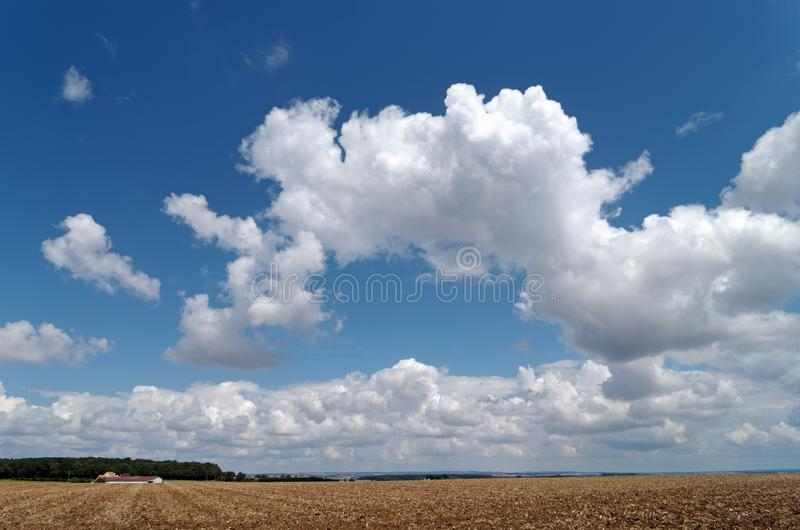 Nubes en campo de trigo fotos de archivo libres de regalías