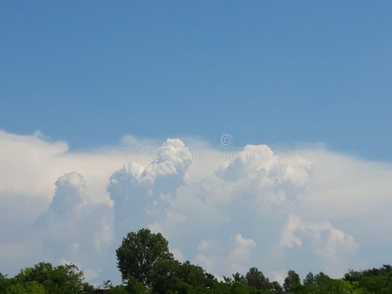 Nubes en el cielo que se mueve sobre los ?rboles fotografía de archivo libre de regalías