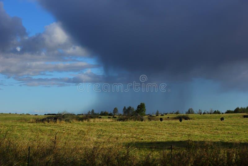 Nubes lluviosas grandes en un lejano fotografía de archivo libre de regalías