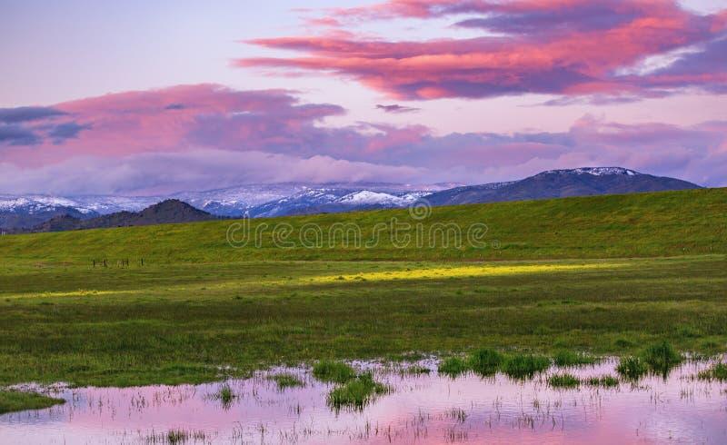 Nubes púrpuras sobre un prado imágenes de archivo libres de regalías
