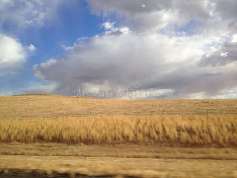 Nubes que ruedan sobre el trigo imagenes de archivo