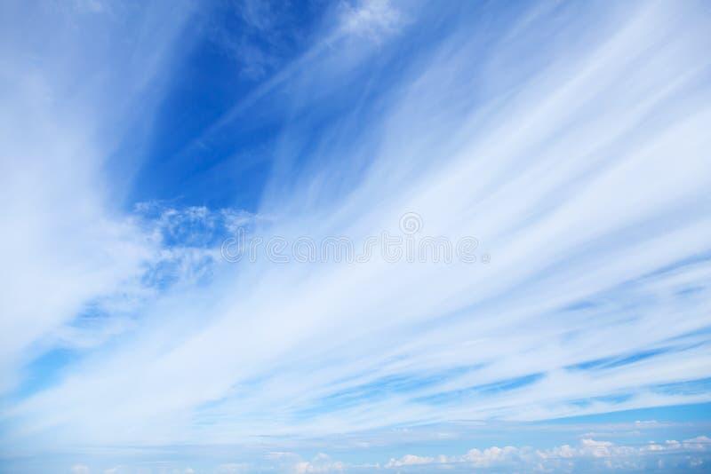 ventosas fondo