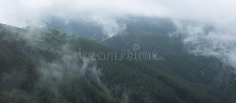Nubes y nieblas en los bosques del Aiako Harria imágenes de archivo libres de regalías