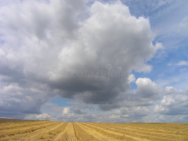 Nubi di estate fotografia stock libera da diritti