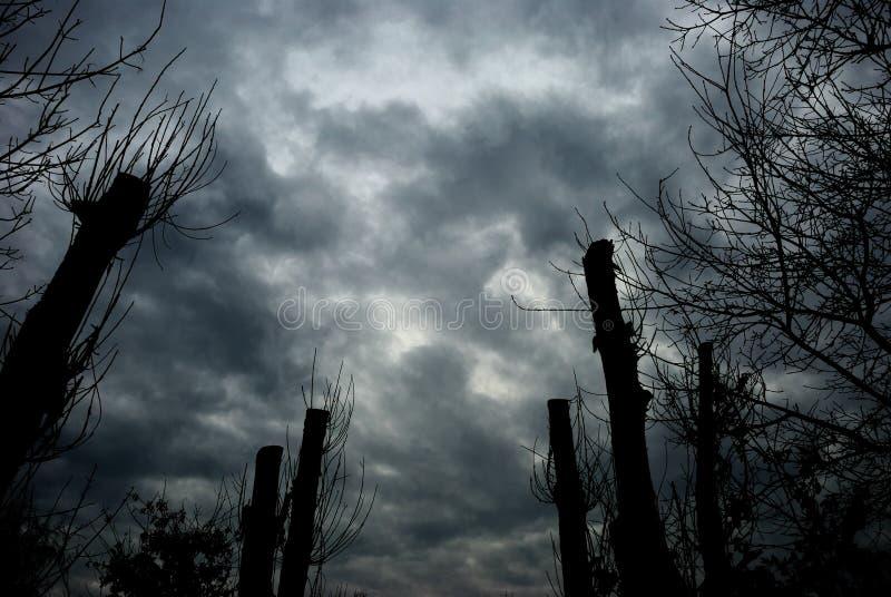Nubi tempestose. fotografia stock libera da diritti