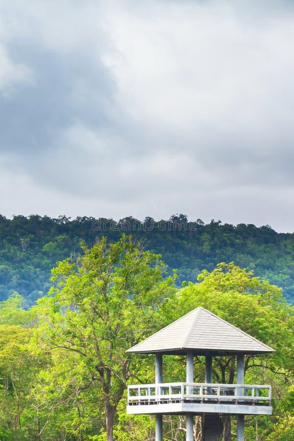 Nublado dramático sobre el bosque tropical y la guarida de observación animal de la torre imagen de archivo