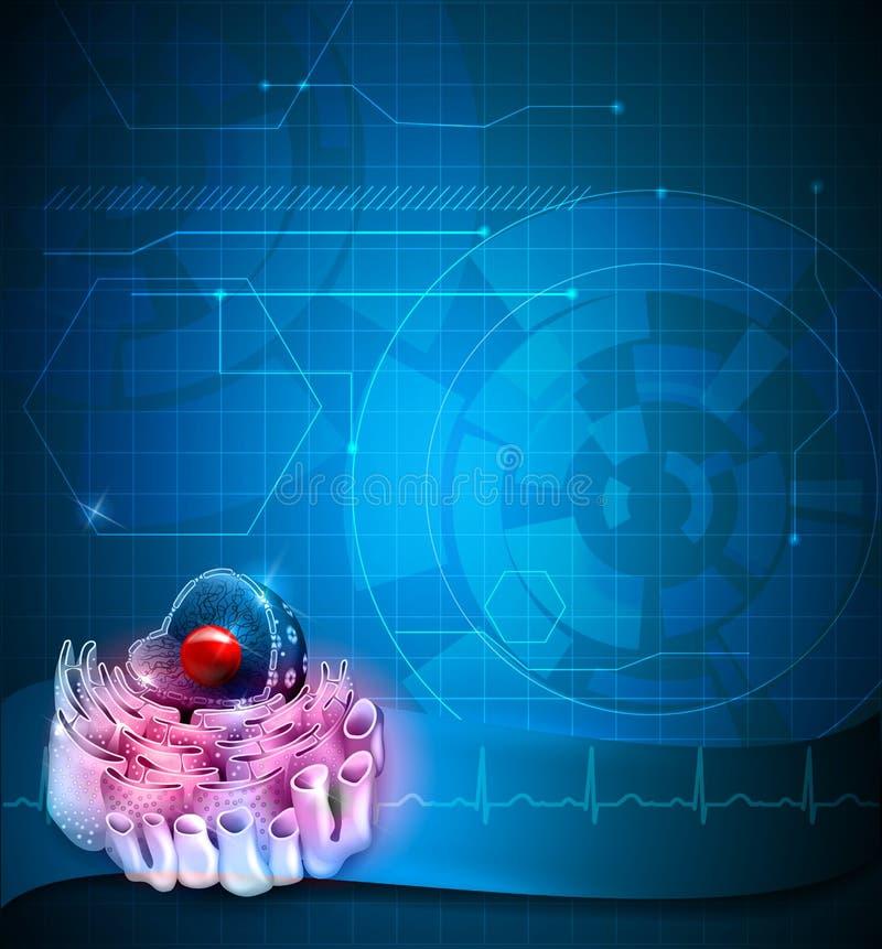 Nucleo delle cellule royalty illustrazione gratis