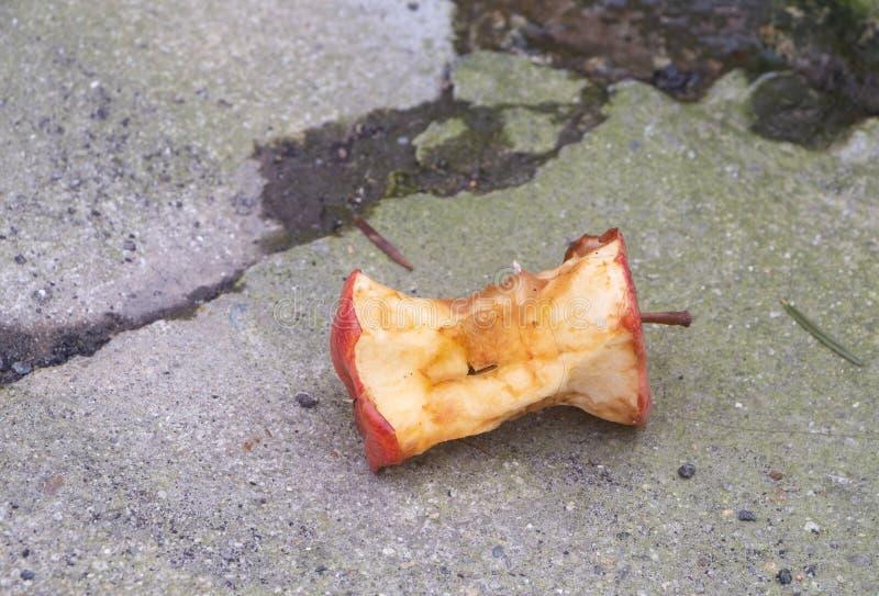 Nucleo di una mela sulla strada immagine stock