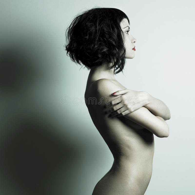 Download Nude elegant woman stock image. Image of feminine, excitation - 11506269