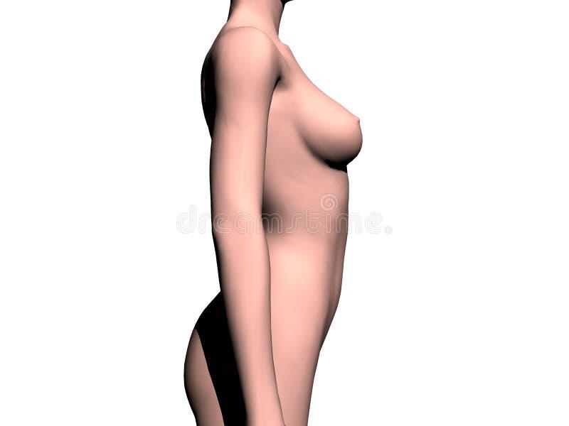 Download Nude woman stock illustration. Illustration of abdomen - 155663