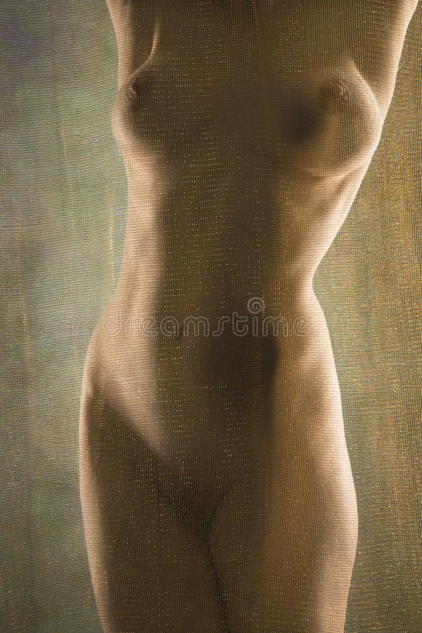 Nude Woman Standing. Stock Photos