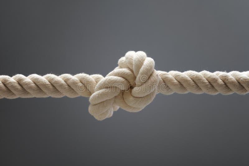 Nudo de la cuerda imagenes de archivo