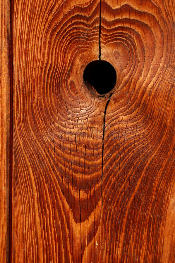 Nudo de madera foto de archivo
