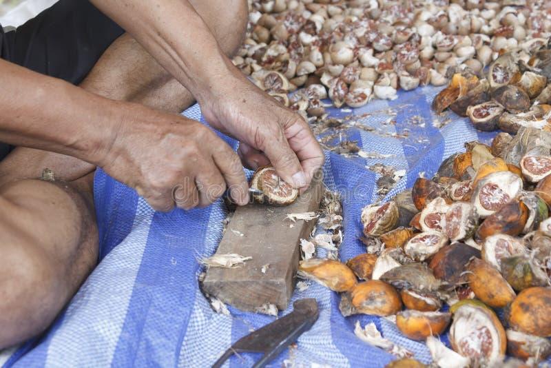 Nueces de betel de la cáscara imágenes de archivo libres de regalías