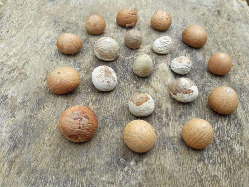 Nueces de betel en un tablero de madera fotografía de archivo libre de regalías