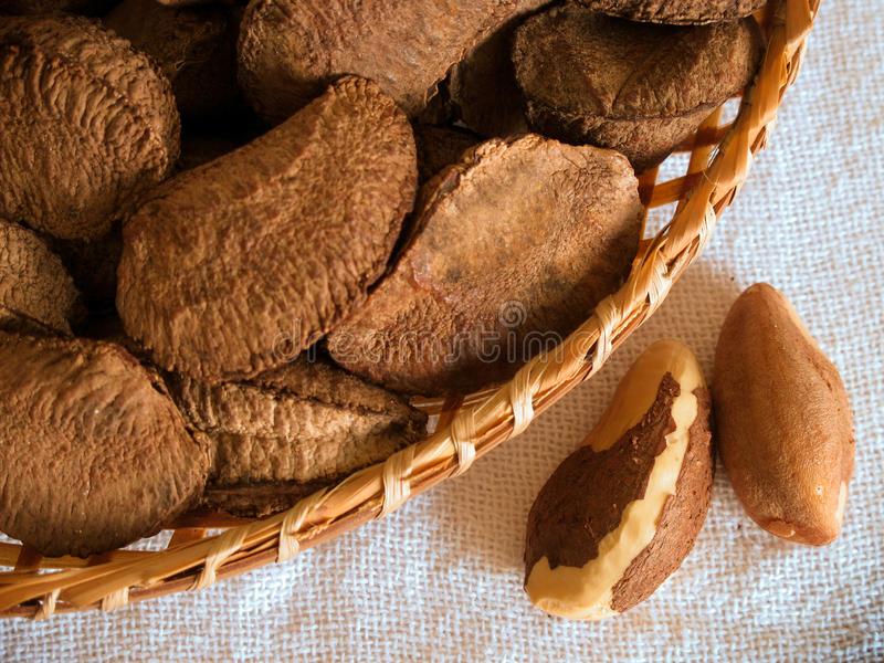 Nueces de Brasil fotos de archivo