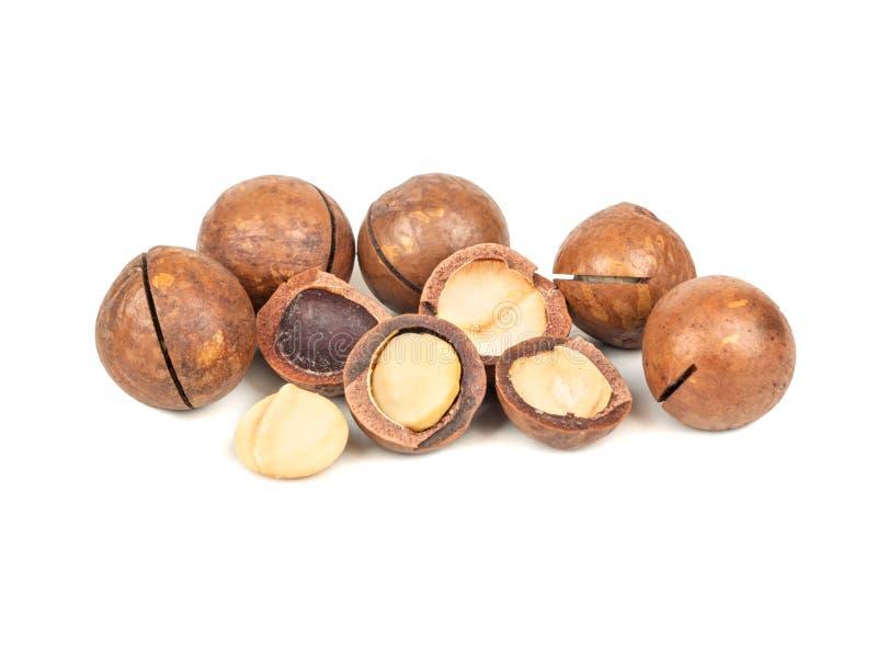 Nueces de Macadamia aisladas imagen de archivo libre de regalías