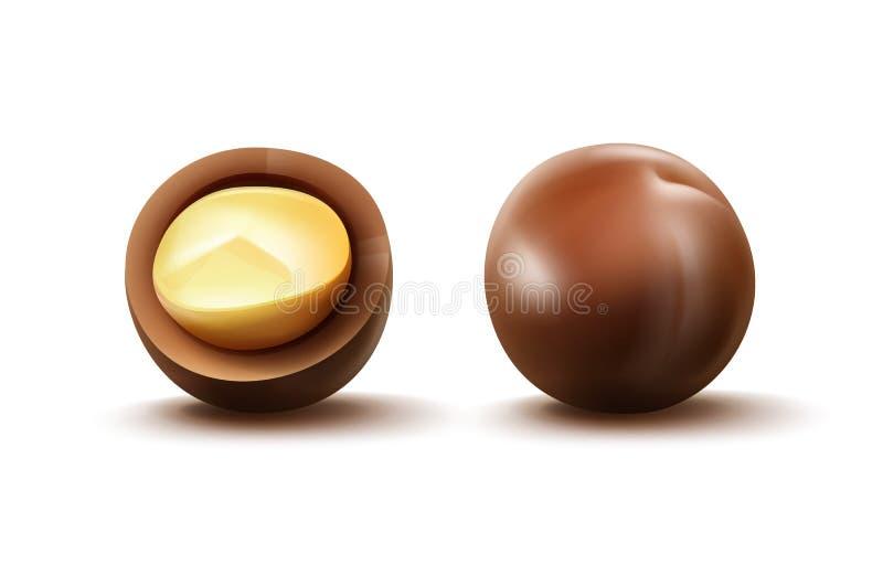 Nueces de macadamia con la cáscara libre illustration