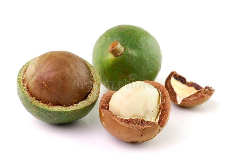 Nueces de macadamia en el fondo blanco imágenes de archivo libres de regalías