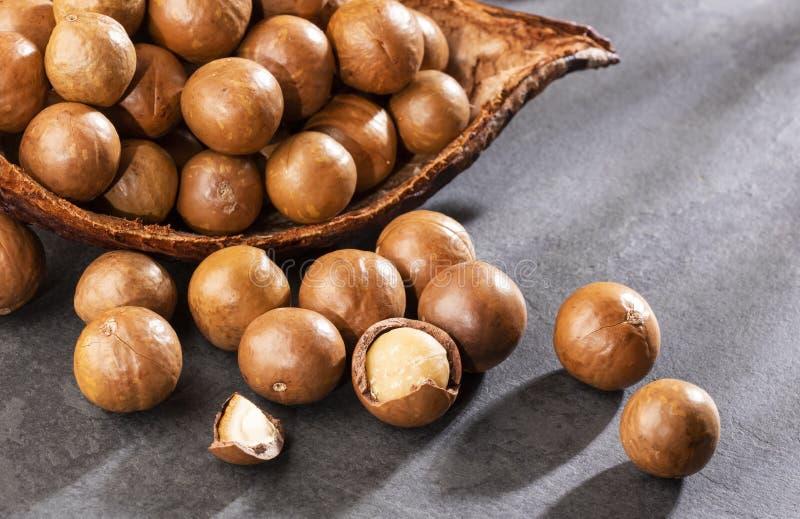 Nueces de macadamia org?nicas - integrifolia de macadamia Espacio del texto fotos de archivo libres de regalías