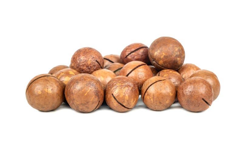 Nueces de macadamia fotos de archivo libres de regalías