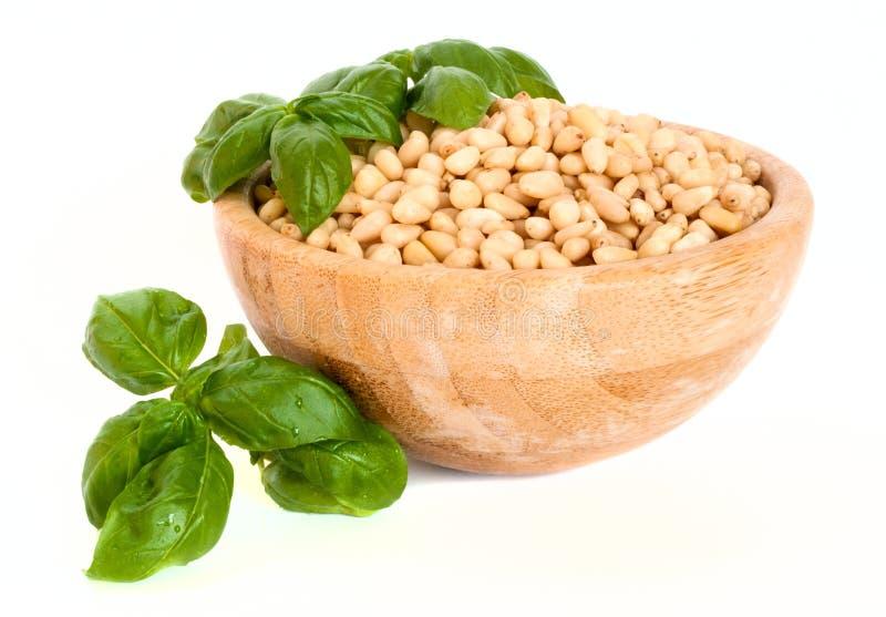 Nueces de pino en un cuenco con albahaca fresca: ingredientes para la salsa del pesto fotografía de archivo libre de regalías