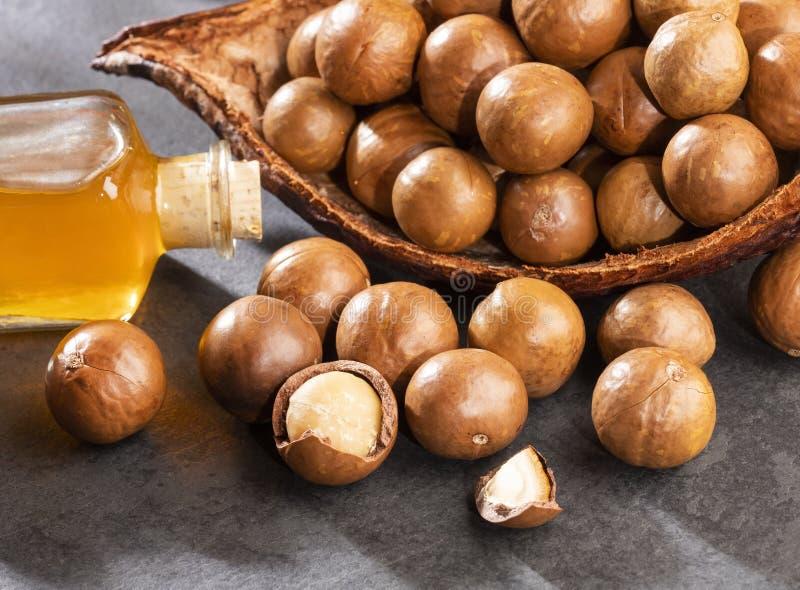 Nueces y aceite de la macadamia - integrifolia de macadamia Espacio del texto imagen de archivo libre de regalías