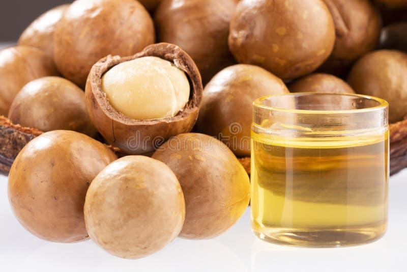 Nueces y aceite de la macadamia - integrifolia de macadamia Fondo blanco fotos de archivo libres de regalías