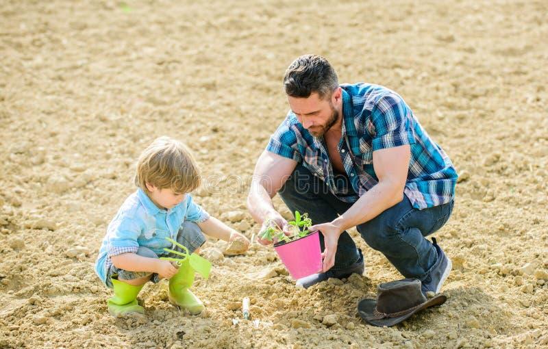 Nueva vida suelos y fertilizantes padre e hijo que plantan las flores en tierra suelo natural rico Granja de Eco D?a de tierra fotografía de archivo libre de regalías