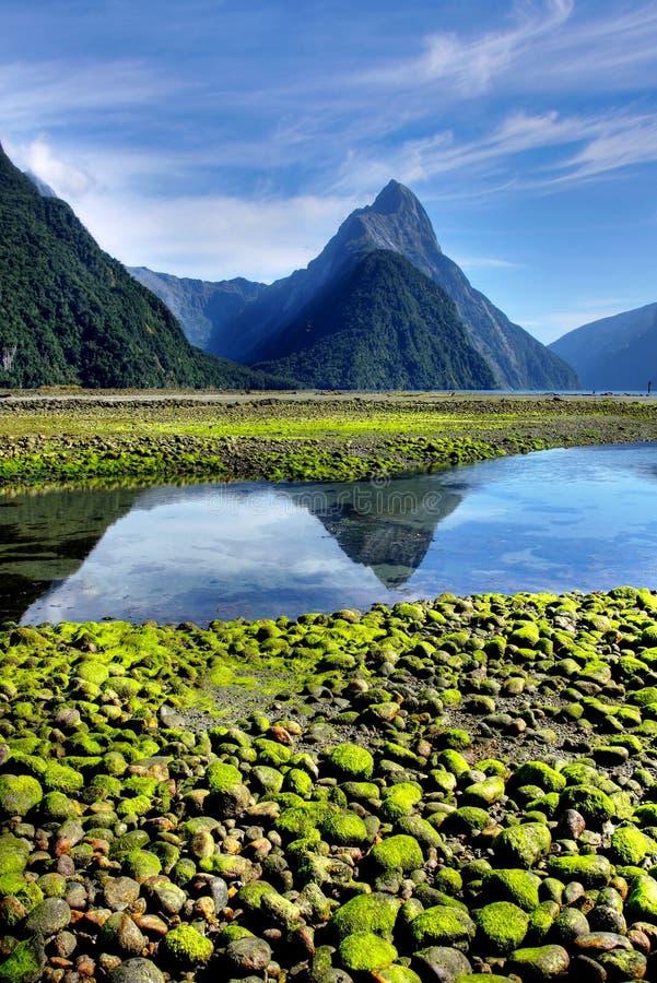 Nueva Zelandia Fiordland en el Milford Sound foto de archivo libre de regalías