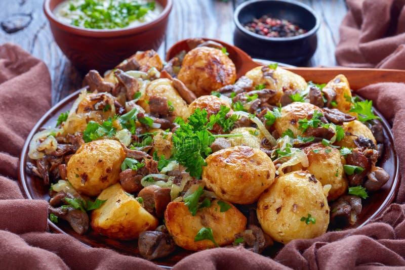Nuevas patatas fritas cacerola con porcini salvaje foto de archivo