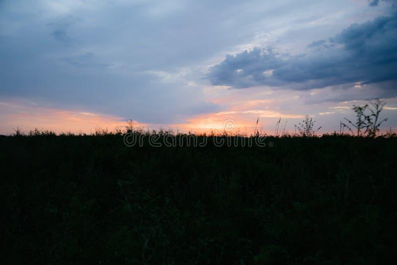 Nuevo concepto feliz del día: Aturdir salida del sol amarilla del otoño del prado con el fondo de la luz del bokeh fotos de archivo