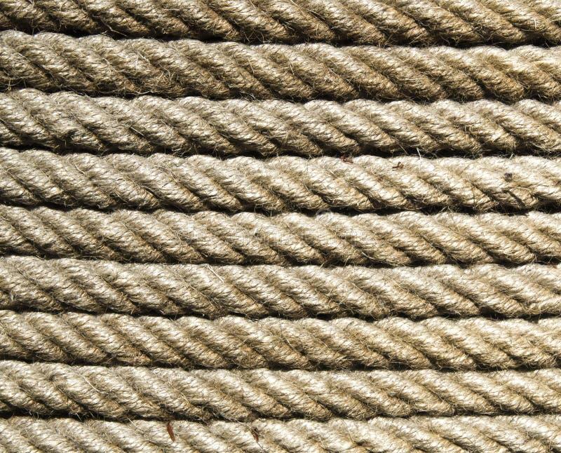 Nuevo primer de la cuerda del ecru en sol fotografía de archivo libre de regalías