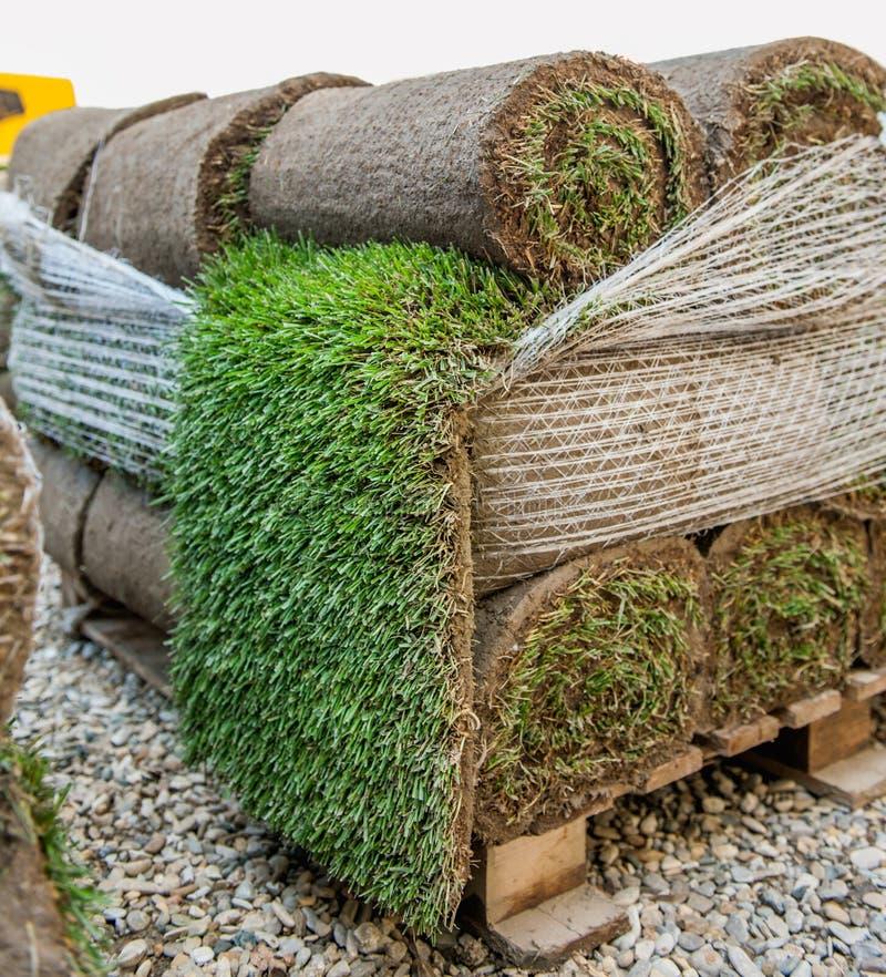 Nuevo rollo verde de la hierba del césped foto de archivo libre de regalías