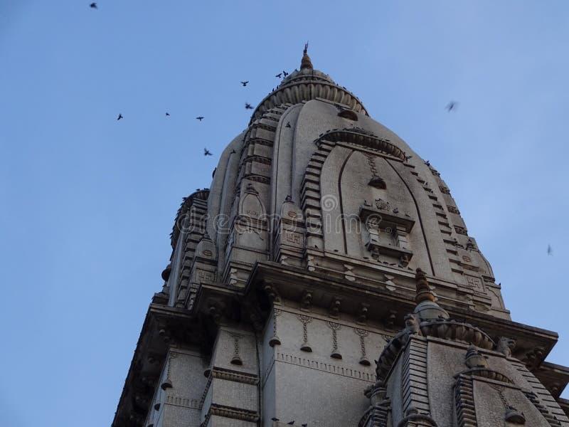 Nuevo templo de Vishwanath fotos de archivo