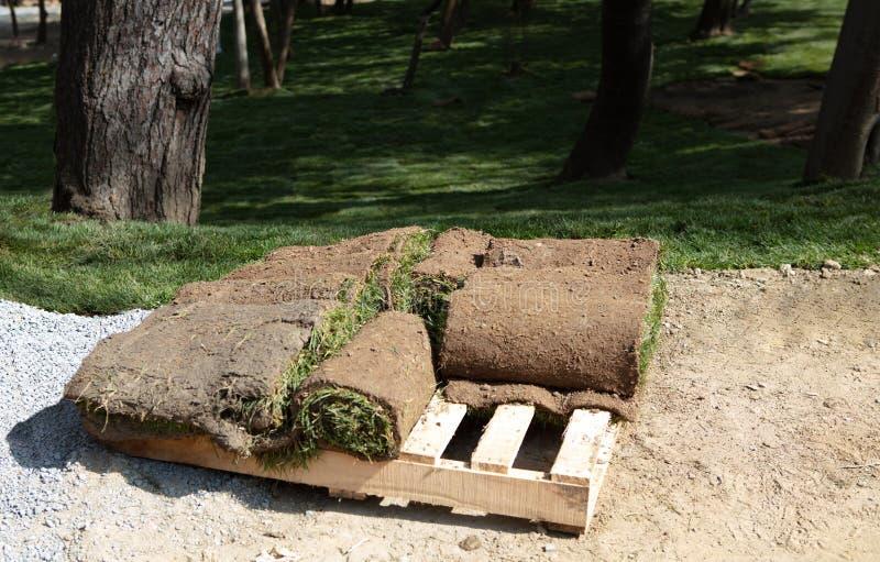 Nuevos rollos verdes de la hierba del césped apilados en una pila en la plataforma de madera foto de archivo