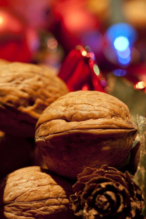 Nuez de la Navidad foto de archivo libre de regalías